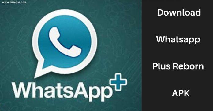 Download Whatsapp Reborn